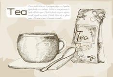 酿造的杯子茶 库存图片