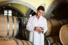 酿酒厂的品尝师用酒在地窖里 库存图片