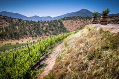 从酿酒厂的看法在卡萨布兰卡,智利 免版税库存照片