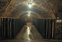 酿酒厂Rovellats 免版税库存照片