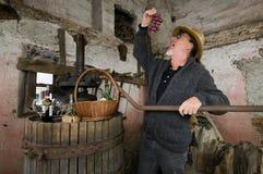 酿酒商葡萄测试 免版税库存图片