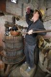 酿酒商葡萄测试 库存照片