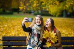 醇厚的秋天 两名逗人喜爱的学生在公园做一selfie 库存图片