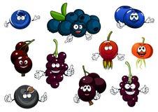 黑醋栗、蓝莓和野蔷薇果子 免版税库存照片