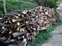 采伐木草堆 库存照片