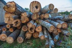 采伐采伐的木头 免版税库存图片