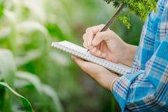 采取与一支笔的笔记在农业的一个笔记本 免版税图库摄影
