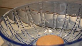 采取从蓝色玻璃碗的妇女手前曲奇饼buiscut 股票视频