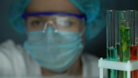 采取从试管架,整容术的实验员绿色液体样品 股票视频