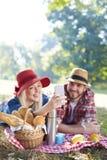 采取在野餐的夫妇selfie 库存照片