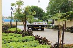 采取植物的卡车 免版税库存照片