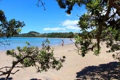 采取沿木桶匠海滩的漫步 库存图片