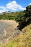 采取沿木桶匠海滩的漫步 免版税库存图片