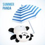 采取sunbath的小的逗人喜爱的熊猫在蓝色下 库存照片