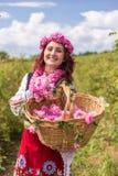 采摘保加利亚桃红色玫瑰的女孩在庭院里 库存图片