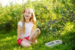 采摘在有机蓝莓农场的逗人喜爱的小女孩新鲜的莓果在温暖和晴朗的夏日 免版税库存照片