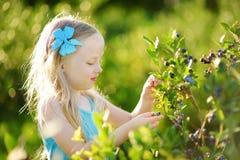 采摘在有机蓝莓农场的逗人喜爱的小女孩新鲜的莓果在温暖和晴朗的夏日 库存照片