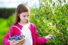 采摘在有机蓝莓农场的逗人喜爱的小女孩新鲜的莓果 免版税图库摄影