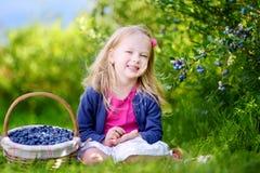 采摘在有机蓝莓农场的逗人喜爱的小女孩新鲜的莓果 库存图片