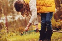采摘愉快的儿童的女孩扮演小花匠在秋天和离开入篮子 免版税库存照片