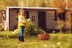 采摘愉快的儿童的女孩扮演小花匠在秋天和离开入篮子 库存图片