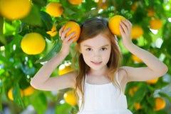 采摘新鲜的成熟桔子的可爱的小女孩 免版税库存图片