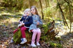 采摘春天的第一朵花两个妹 库存照片