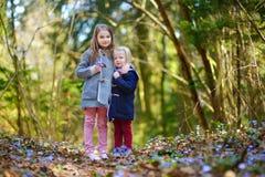 采摘春天的第一朵花两个妹 免版税库存图片