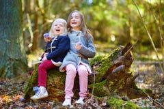 采摘春天的第一朵花两个妹 免版税库存照片