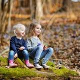 采摘春天的第一朵花两个姐妹 免版税库存照片