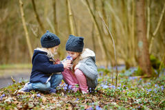 采摘春天的第一朵花两个姐妹 库存图片