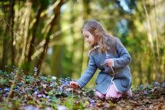 采摘春天的第一朵花可爱的小女孩在森林 免版税库存照片