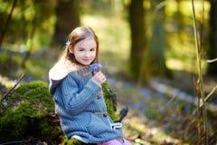 采摘春天的第一朵花可爱的小女孩在森林 免版税图库摄影
