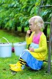 采摘甜樱桃的逗人喜爱的小女孩在果树园 免版税库存图片