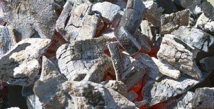 采煤腐朽 库存照片