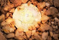采矿在地面土壤深刻的真正cryptocurrency bitcoin开采的概念的金黄Bitcoins 免版税库存图片