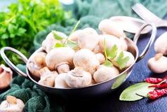采蘑菇原始 免版税库存照片
