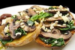 采蘑菇发酵母 库存图片