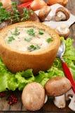 采蘑菇土豆汤 免版税库存照片