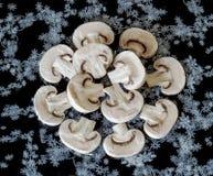 采蘑菇在裁减的蘑菇 免版税库存图片
