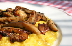 采蘑菇意大利煨饭 免版税库存图片