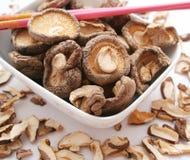 采蘑菇椎茸 库存图片