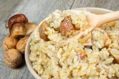 采蘑菇porcini意大利煨饭 库存照片