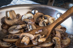 采蘑菇portobello 库存照片