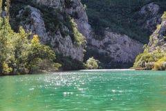 采廷娜的鲜绿色glitteringwaters 免版税库存照片