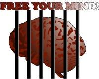 释放您的头脑 免版税库存图片
