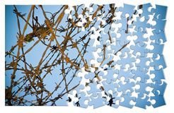 释放自己从 与铁丝网的概念图象在竖锯 免版税图库摄影