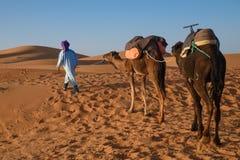 巴巴里人人主导的有蓬卡车, Hassilabied,撒哈拉大沙漠,摩洛哥 免版税图库摄影