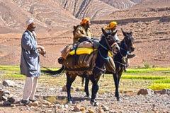 巴巴里人是土著人民到摩洛哥的阿特拉斯山脉 免版税库存照片