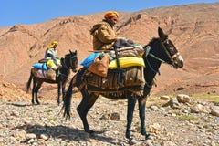 巴巴里人是土著人民到摩洛哥的阿特拉斯山脉 免版税图库摄影